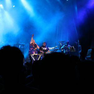 Dranouter Festival 2017 - De Dolfijntjes